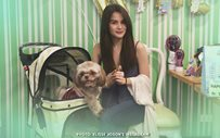 Elisse Joson throws an arrfff-rific dog party!