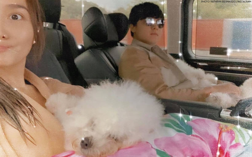 Here's a cute fur parent moment featuring Kathryn and Daniel!