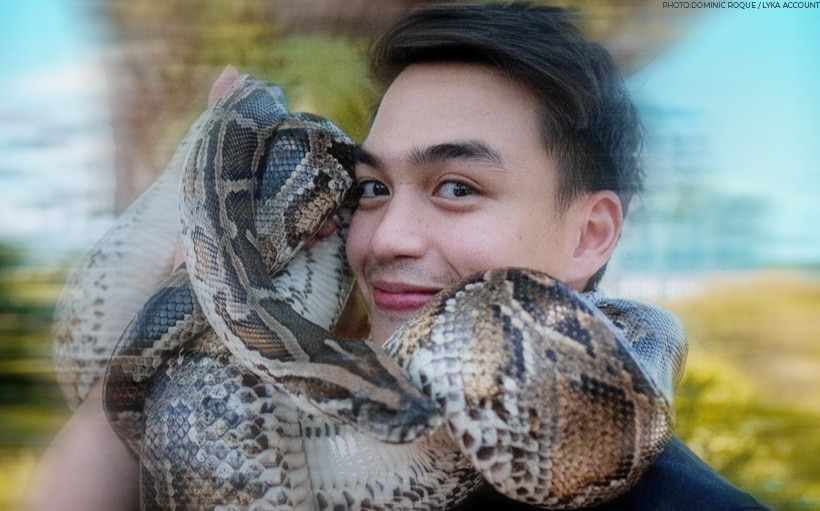 LOOK: Dominic Roque poses with a huge snake