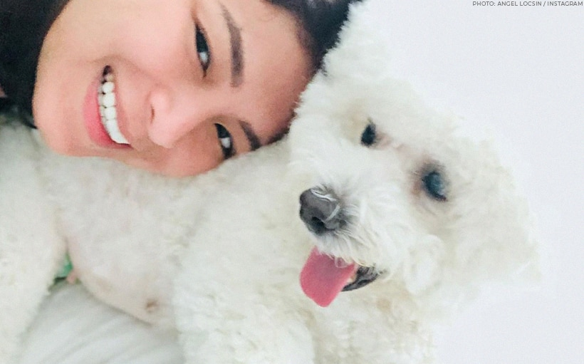 Angel Locsin mourns death of her pet dog, Pwet Pwet