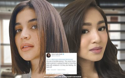 Anne calls netizen 'horrible' over malicious comment about Nadine