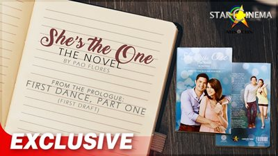 Understand 'She's The One' characters better with this novel!